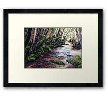 Along the Creek, Blue Mountains Framed Print