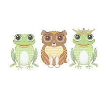 Frog Dog Prince by Jean Gregory  Evans