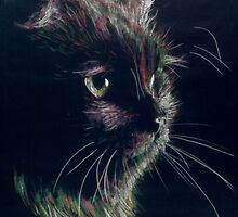 Another colour inverted cat by Peter Brandt
