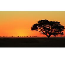 Sunset Gold - Nature Background - African Peace Photographic Print