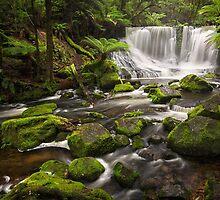 Horseshoe Falls, Mt Field, Tasmania by Chris Cobern
