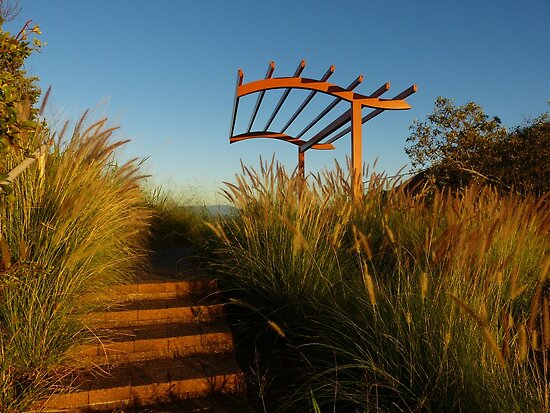 A grassy lookout by PhotosByG
