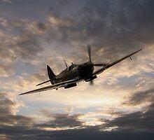 Golden Spitfire by J Biggadike