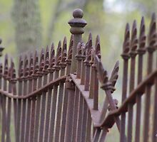 Wrought Iron Fence in the Spring by Gilda Axelrod