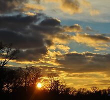 Dramatic Winter Sky by Gilda Axelrod