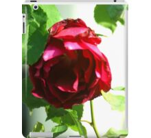 Lonely red rose. iPad Case/Skin
