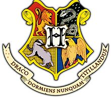 Hogwarts School Of Witchcraft and Wizadry Crest by yaaaaaazzzz