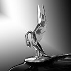 Packard Hood Ornament 'Swan Song' by DaveKoontz