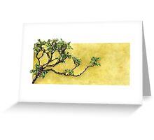 Japanese Pittosporum at the Hakone Gardens Greeting Card