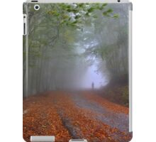 Lonesome stranger at the mythical mountain iPad Case/Skin