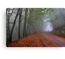 Lonesome stranger at the mythical mountain Canvas Print