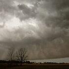 'Tis The (Tornado) Season by WildestArt