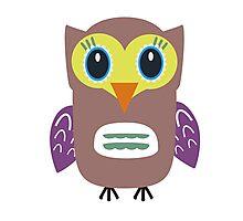 Coloured Owl  Photographic Print