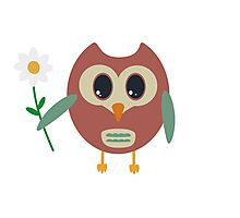 Coloured owl with a flower Photographic Print