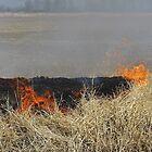 Burning The Fields by WildestArt