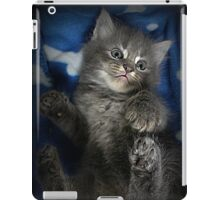 Fluffs iPad Case/Skin