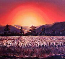 Sugar fields by Karin Getaz