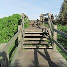 Nearing the top of Cabarita Boardwalk for Whale Watching. N.S.W. Nth. Coast. by Rita Blom