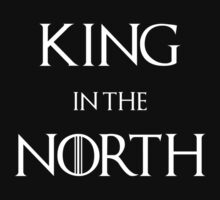 King in the North (dark) by ExplodingZombie