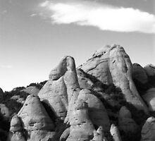 mountain top by Ido Friedman (2DogsDesign)
