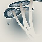 Shrooms by Brad Sharp