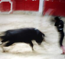 BULLFIGHT 1 by danielgomez