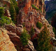 Black Canyon of the Gunnison by Roger Passman