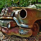 Battered Buick by Len  Gunther
