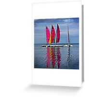 Cat' Voiles Greeting Card