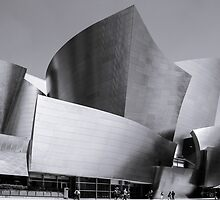 Watl Disney Concert Hall by Radek Hofman