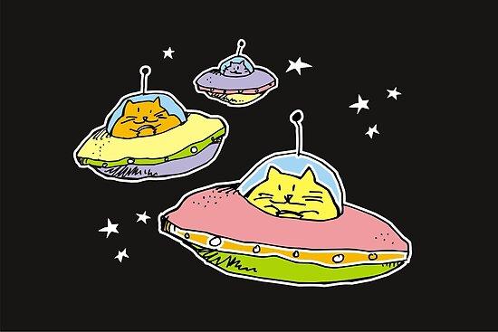 space cats by Matt Mawson