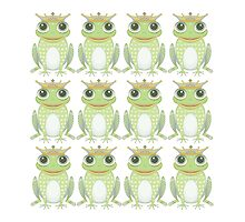 Twelve Princely Frogs by Jean Gregory  Evans