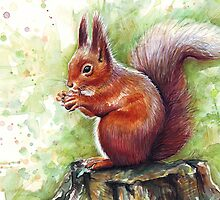 Cute Squirrel Watercolor Painting by OlechkaDesign