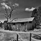 The Smithies shed by Len  Gunther