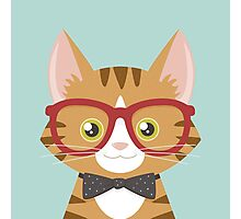 Orange Tabby Hipster Cat Photographic Print