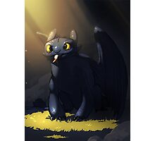 Toothless In A Cave Photographic Print