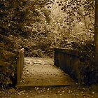 Stanley Park Pathway by Rae Tucker