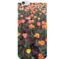 Broadmoor Spring iPhone Case/Skin