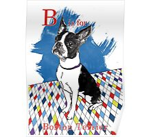 B is for Boston Terrier II Poster