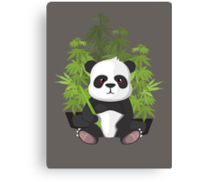 High panda Canvas Print