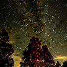 Star light star bright #3 by Mark Batten-O'Donohoe
