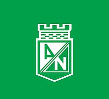 Atletico Nacional campeon copa postobon  2014 Colombia by o2creativeNY