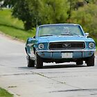Mustang on the Move by Keala