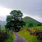 The Heart of Martindale by mikebov