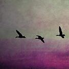 Goose Flight  - JUSTART ©  by JUSTART