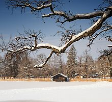 Winter Lake by Kasia-D