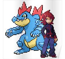 Silver And Feraligatr Poster