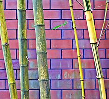 Bamboo and Bricks © by Ethna Gillespie