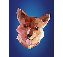 Ein the Corgi  Photographic Print