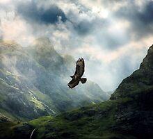 The Light of Flying by Kenart